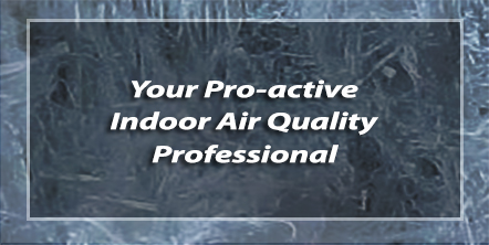 Indoor Air Quality Professional